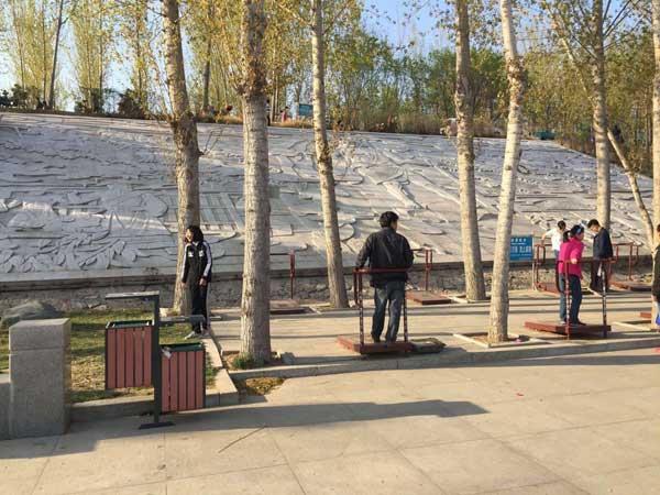 减河湿地公园高低双桶垃圾桶项目