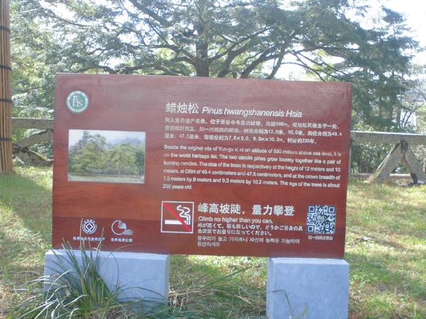 安徽黄山景区
